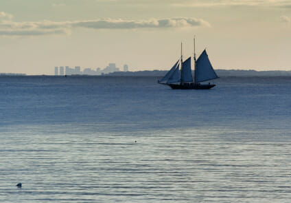 Schooner sailin in Boston north shore
